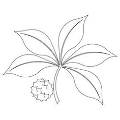 Ohio State Buckeye Leaf Drawing Buckeye Leaf Logo