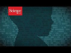 Machine learning algorithms may need programmed instincts to gain common sense