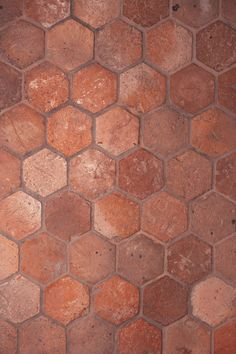 ANN SACKS Antique Dark x hex terra cotta field with antique finish Terracotta, Quarry Tiles, Earthy Color Palette, Rustic Room, Tiles Texture, Butler Pantry, Flooring Options, Mirror With Lights, Paint Shop