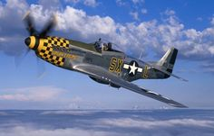 P-51 Mustang...What else needs to be said?