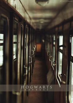 The Hogwarts Express is actually the best I mean there is litterally a kind lady handing our candy, and you have your own compartment that can lock and it goes to Hogwarts. Nuff said