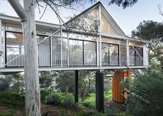 Modernist glass treehouse comes with a tiny timber studio with a long wooden pathway. Click through for more images of this stilted space.
