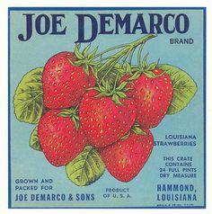 vintage strawberry art - Google Search