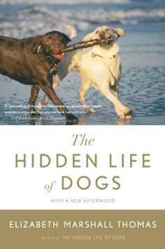 I read this book back in the early 1990's! Based on thirty years of living with and observing dogs, we meet Misha, a friend's husky, whom Thomas followed on his daily rounds of more than 130 square miles, and who ultimately provided the simple and surprising answer to the question What do dogs want most? Other dogs!