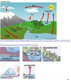 Water cycle wonders ... hands on activities + free notebook page download