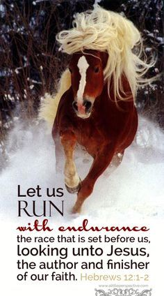 Hebrew Let us run with endurance the race that is set before us, looking unto Jesus, the author and finisher of our faith. Scripture Pictures, Scripture Verses, Bible Verses Quotes, Bible Scriptures, Son Quotes, Biblical Quotes, Family Quotes, Inspirational Horse Quotes, Uplifting Quotes
