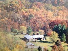 Serene Wooded Getaway in Virginia Horse & Vineyard CountryVacation Rental in Middleburg from @homeaway! #vacation #rental #travel #homeaway
