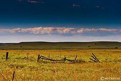 Those Kansas Plains...