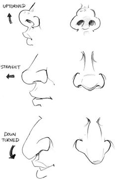 drawing a nose Frm bd: I love this