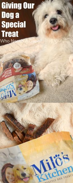 There are days when I feel it is important to focus on Giving Our Dog a Special Treat. Sometimes we need to show our family pet they mean the world to us. #ad @walmart