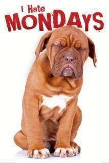 Thank god it's Monday - Makes your mondays much more enjoyable!    Best regards,  http://plingm.com/app
