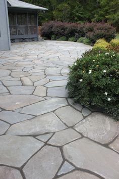 Awe-inspiring photo - visit our website for a lot more tips! #walkwaystones