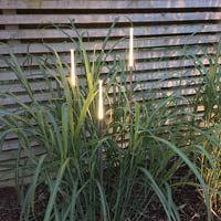 Trägårdsbelysning Straw 1-2-3, Dekorativ trädgårdsbelysning Straw 1-2-3
