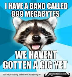 Lame Pun Coon: i have a band called 999 megabytes...