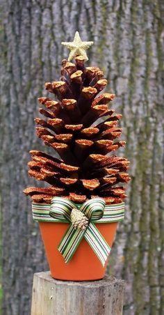 Bom dia para você que está visitando o blog!   Quando eu era criança, no nosso sítio, tinha um pinheiro incrível e eu brincava com as pinha...