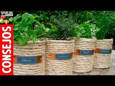 to grow a kitchen garden! Tips on growing herbs and creating unique containers! to grow a kitchen garden! Tips on growing herbs and creating unique containers!to grow a kitchen garden! Tips on growing herbs and creating unique containers! Coffee Canister, Coffee Cans, Canister Sets, Plastic Coffee Containers, Herb Pots, Modern Backyard, Rustic Backyard, Large Backyard, Diy Planters