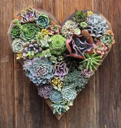 Valentines Day Gift LARGE Heart Vertical Garden by SucculentWonderland on Etsy https://www.etsy.com/listing/264602486/valentines-day-gift-large-heart-vertical