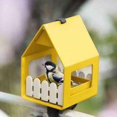 Startseite | TrendXPRESS - Im Winter an die #Vögel denken!