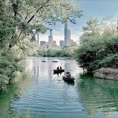 Central Park Nyc, Art, Art Background, Kunst, Art Education