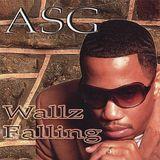 Wallz Falling [CD]