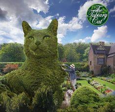 Me topiarising The Topiary Cat - Skulpturen, Kunst in Gärten, Parks - Cat Garden, Garden Art, Garden Design, Garden Ideas, Beautiful Cats, Beautiful Gardens, Beautiful Pictures, Animals And Pets, Cute Animals