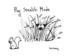 bahhumpug:    Pug stealth mode.    Hee hee. Why a pug will never catch a squirrel!