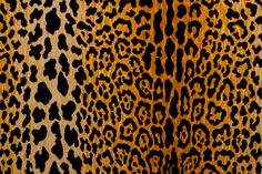 Braemore Jamil Leopard Print Natural Velvet Fabric Cut Yardage SHIPS QUICK by DaisyMaeFabrics on Etsy https://www.etsy.com/listing/456776532/braemore-jamil-leopard-print-natural
