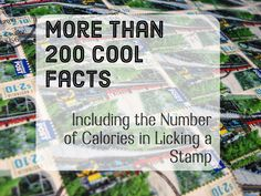 Over 200 Fun, Odd Facts Most People Don't Know
