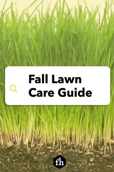 Fall Lawn Care Guide Fall Lawn Care, Handyman Magazine, Top Soil, Dry Leaf, Landscaping Tips, Make It Through, Grass, Herbs, Landscape