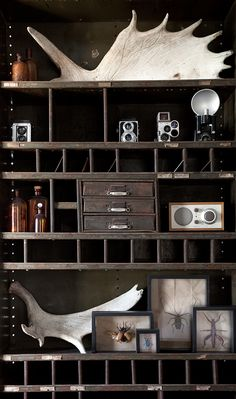Great industrial shelving for collections
