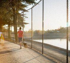 silverlake walking dog reservoir devon0081