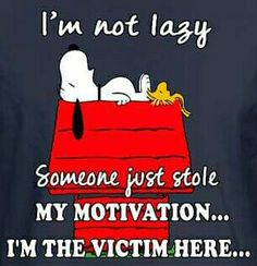 They also stole my desire to get off my couch. Charlie Brown Quotes, Charlie Brown And Snoopy, Cute Quotes, Best Quotes, Funny Quotes, Snoopy Love, Snoopy And Woodstock, Snoopy Pictures, Funny Pictures