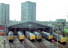 Line up at Finsbury Park. Crepello stands out with white window surrounds. Electric Locomotive, Diesel Locomotive, Steam Locomotive, Steam Trains Uk, Finsbury Park, London History, Train Pictures, British Rail, Steam Engine