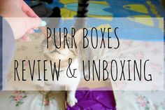 This month, Harry and I have had the pleasure of working with Purrboxes *, a unique subscription box for your furry little purr baby. Posts, Box, Messages, Snare Drum