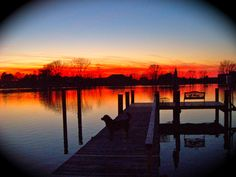1/5/12 Sunset on Fishing Creek, Cambridge, MD- Note the shadow of a dog on the dock. Our Charlie was in awwww...
