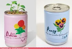 cute kawaii stuff - Flowers In a Can- How awesome would these be.