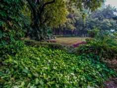 Picnic Spot by Rahul Tripathi on 500px