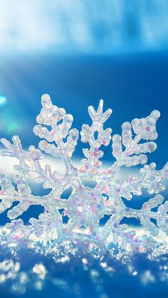 snow snowflake winter