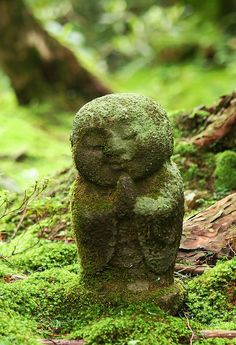 mossy little forest Buddha - Kyoto, Japan