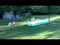 #Hond gaat er van door met zwembad #video