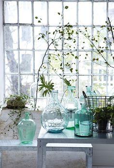 #vintage #bottle, #vase, indoor #plants and window
