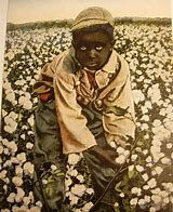 Image result for Cartoons of Slaves Picking Cotton