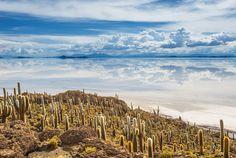 Incahuasi Island, Salar De Uyuni, Bolivia Stock Photo - Image of bolivia, heat: 34171748 South America, Places To See, Chile, Beautiful Places, Sky, Island, Stock Photos, Nature, Travel