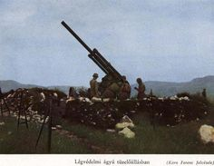 Hungarian artillery in defend pozition. Ww2 Photos, Defence Force, Axis Powers, Eastern Europe, Military History, World War Two, Military Vehicles, Wwii, Gallery