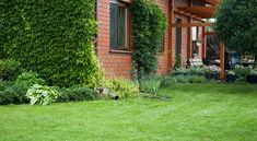 Learn the three key steps for healthy lawn care and how to get a green lawn: cutting, water, and fertilizer.