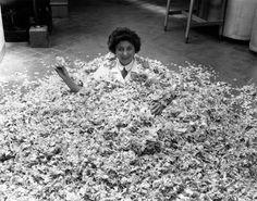 Bernadette Cohas assise dans des pétales de rose, parfumerie Molinard à Grasse - 26 mai 1955