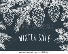 Winter time. Winter background with pine branches with cones. Hand drawing with chalk on a blackboard. Sketch, design elements. Christmas, New Year. Vector illustration.
