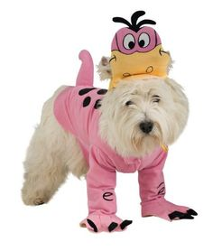 $17.99-$18.99 Flintstones Dino Dog Halloween Costume (Medium) - Includes: Characture hat, and top with attached tail and front paw covers. This is an officially licensed The Flinstones TM costume. http://www.amazon.com/dp/B001BYH5IY/?tag=pin2pet-20