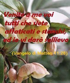 dal Vangelo di Matteo 11:28