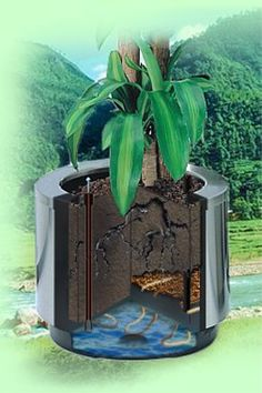 Hobby Flower's patented System. Look inside our Hydroplanters!